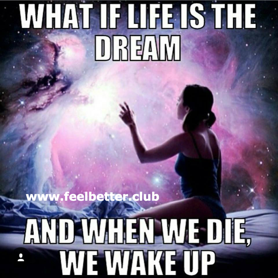 What if life is the dream