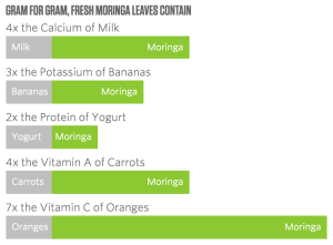 What's In Moringa